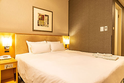 Sunroute Plaza Shinjuku – Standard Queen Room